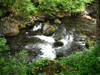 North Fork Battle Creek