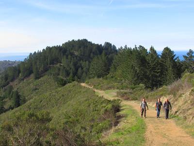 Purisima Redwoods: Dec 9, 2017