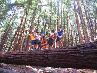 Redwood Park/Girls Camp: Jun 22-24, 2018