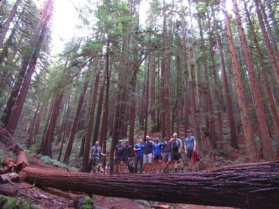 Redwood Regional Park: Nov 12, 2017
