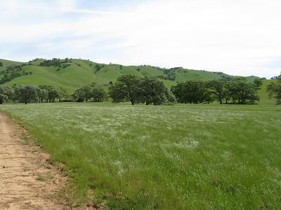 Round Valley Regional Preserve 2011/04/17