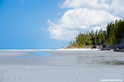 Beaches of the Grand Bahama