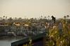 2007-02-19 - Corona Del Mar & Laguna Beach - 014 -  DSC_5220