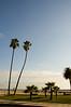 2007-02-19 - Corona Del Mar & Laguna Beach - 050 -  DSC_5262