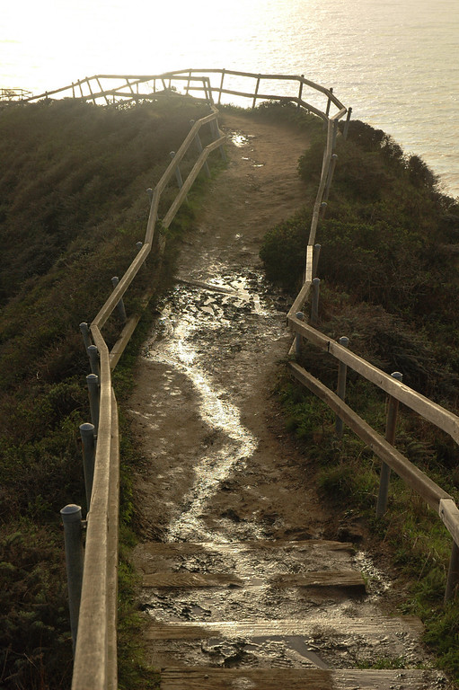 Walkway down from Muir Beach to the cliffs.