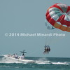 Naples FL Copyright Minardi 2008 040