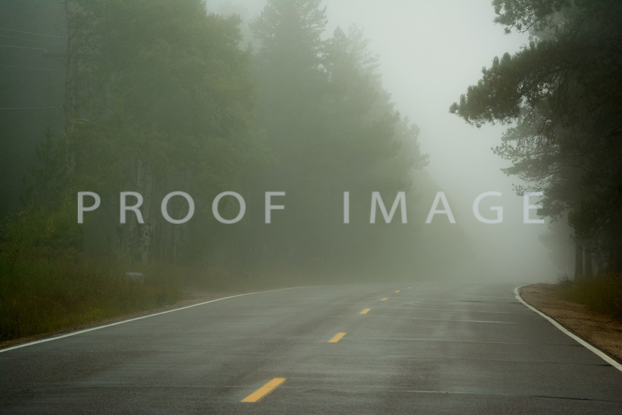 Foggy Road Ahead