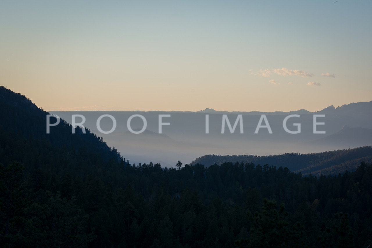 Early Morning in Conifer