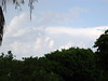 After the Storm . . . (Miami, FL - June 18, 2005)
