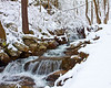 Snowy Stream in Virginia