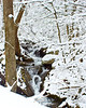 Page County Virginia Snow