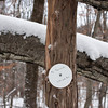"Disc says""  To remove:  lift and run""...many cute tongue in cheek signs in this preserve"