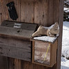 "December 30, 2012 - Entry Kiosk - ""It's cold out here!"""