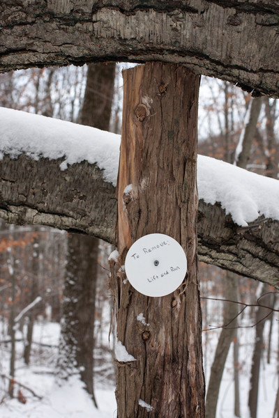 """Disc says""""  To remove:  lift and run""""...many cute tongue in cheek signs in this preserve"""
