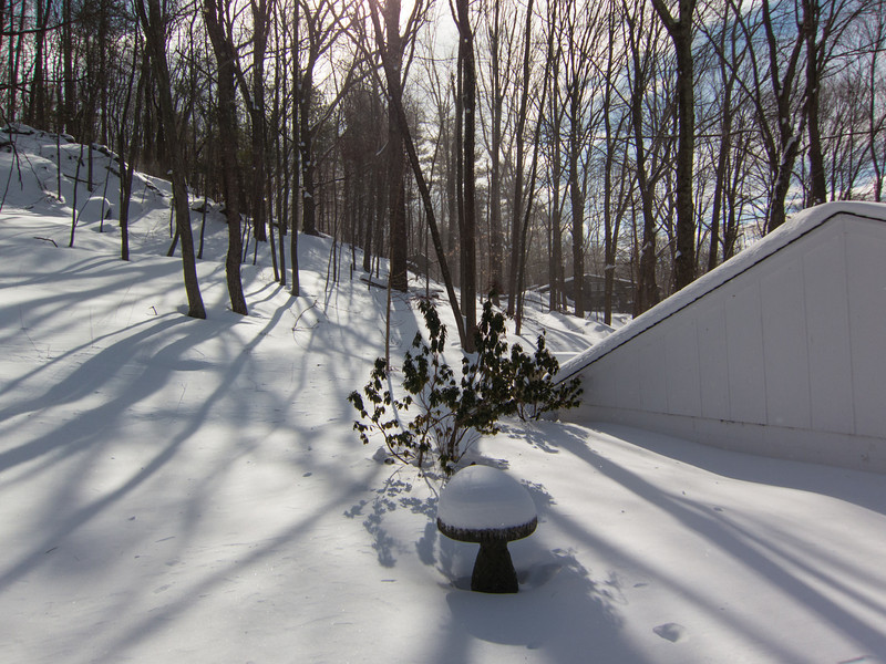 back yard day after blizzard