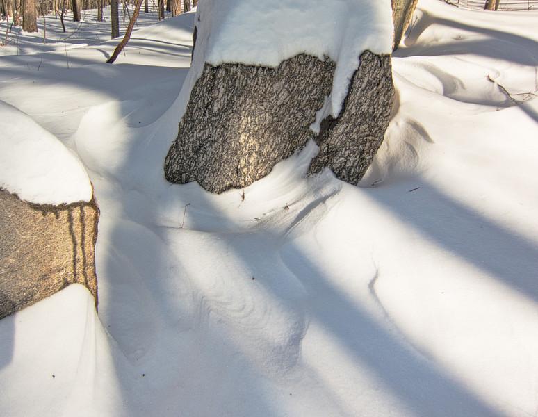 Westchester wilderness alk snowshoe trip