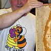 This is what the comb looks like when it comes out of the hive.<br /> The white is wax that is used to seal the honey in by the bees.