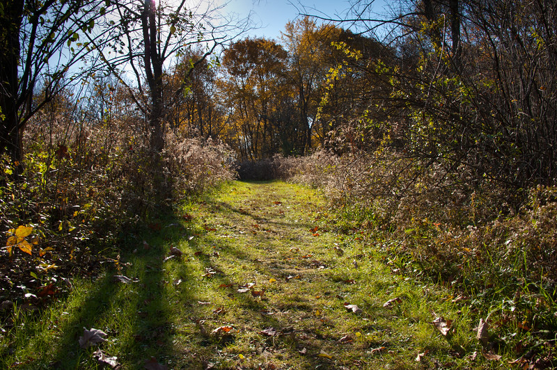 Beechwood Farms Nature Preserve - Fall 2011