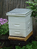 My first hive with the third super reinstalled (5/2/2009)