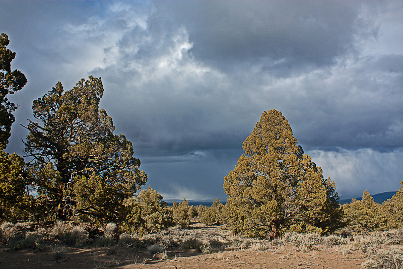 Storm across the valley in the Badlands Wilderness Nature Study Area, Bend, Oregon