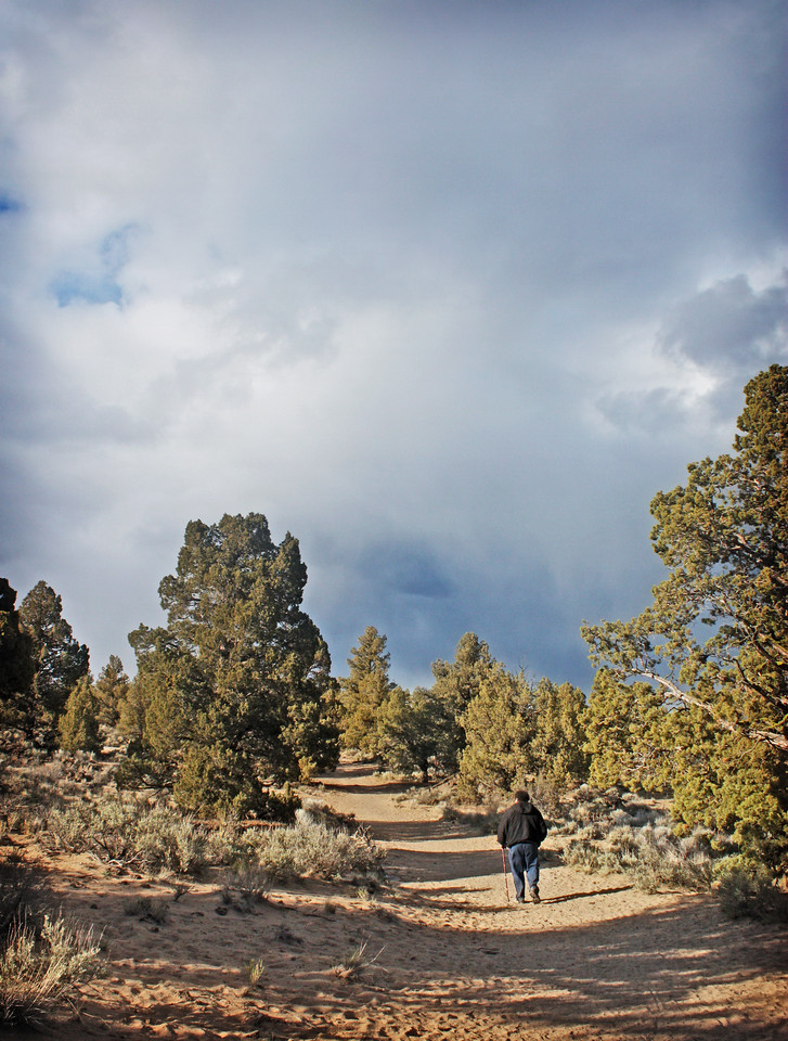 Along the Ancient Juniper Trail in the Badlands Wilderness Nature Study Area, Bend, Oregon