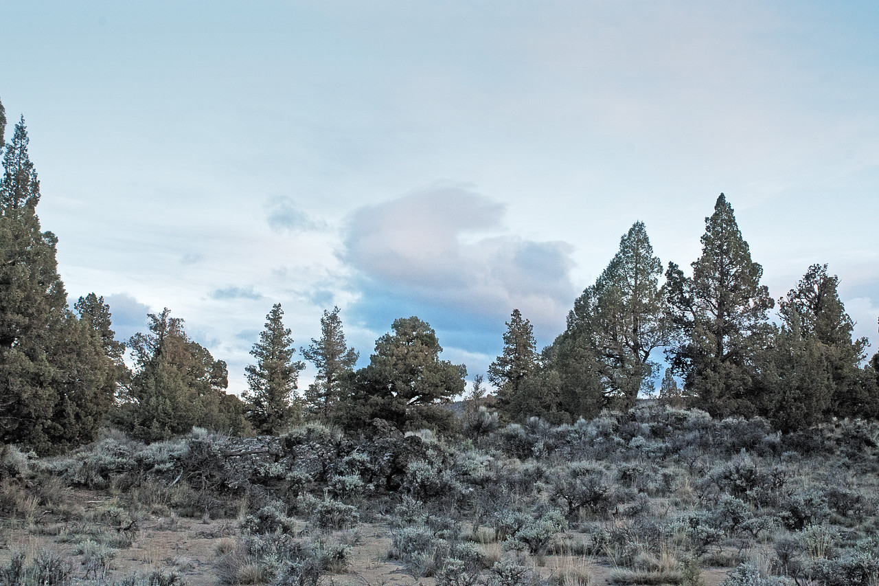Twilight creeping in, in the Badlands Wilderness Nature Study Area, Bend, Oregon