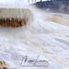 Marshmallow Melt