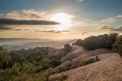 Late afternoon landscape at Russian Ridge Open Space Preserve