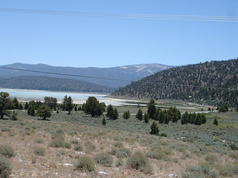 We had a long walk and lunch at a nature preserve near Baldwin Lake, which is just East of the much larger Big Bear Lake.