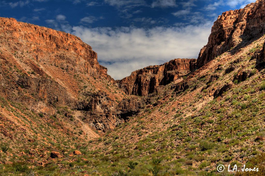 Big_Bend_Ranch_LAJ0989