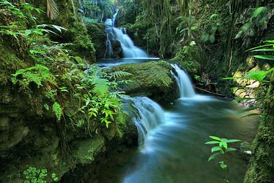 Onomea Falls. 0507_3467