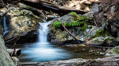 A small cascade in Limekiln Creek not far from the main falls.  I probably looked pretty silly laying on a downed redwood trying to brace the camera for this three second shot.