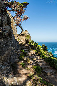 Stone stairs heading up to the point lookout.