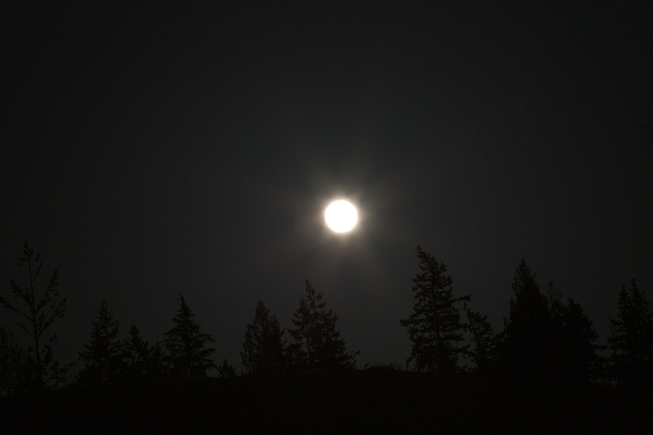 Big Moon Rising 002