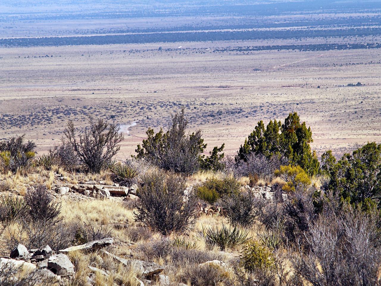 OLYMPUS DIGITAL CAMERA--Overlooking the desert floor.
