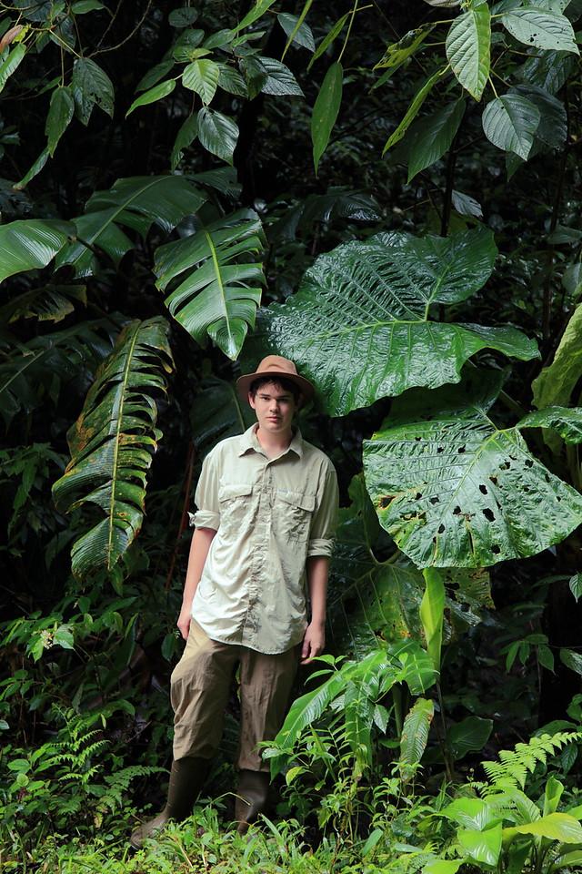 Alex and the big leaves, Alberto Manuel Brenes Biological Reserve, Costa Rica