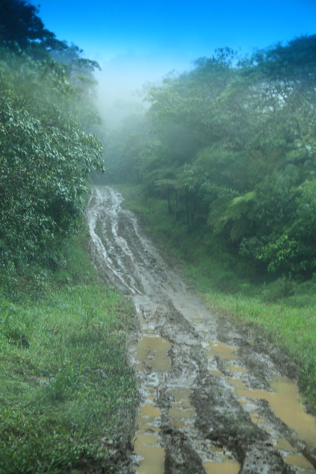 The road leading to the Alberto Manuel Brenes Biological Reserve, Costa Rica