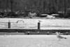 12.18.2010 Fredericksburg Virginia City Dock on Rappannock River