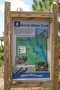 Scrub Ridge Trail - Merritt Island