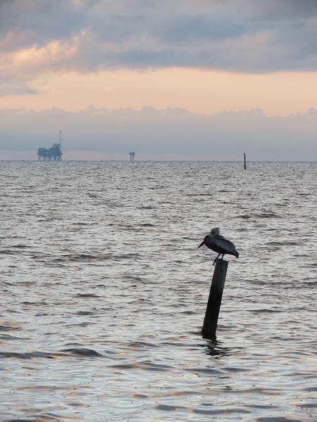 Gulf Coast (Alabama, Mississippi, Louisiana)