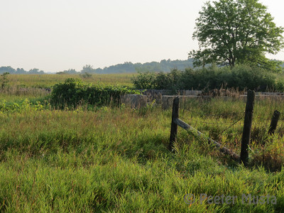 "The ""White Barn"" site. The Barn is long gone...but the description remains with birding reports."