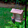 Red Bellied Woodpecker at front yard feeder in Brunswick, Georgia