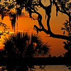 Sunset at 309 River Ridge in Brunswick, GA on 06/12/07 with Yellow Crowned Night Heron in Oak Tree