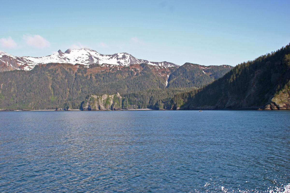 Kenai Fjords NP Tour