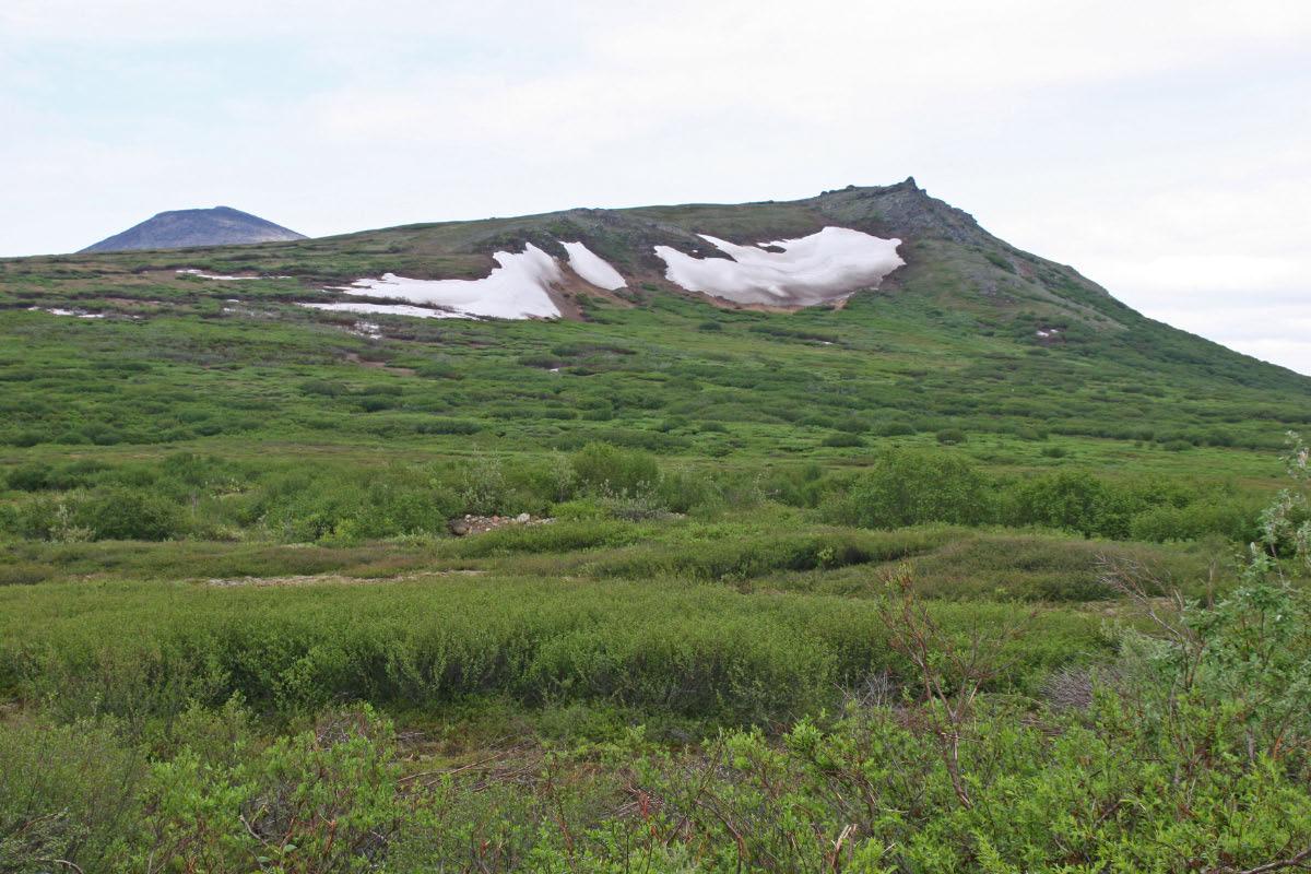Kougarok Road