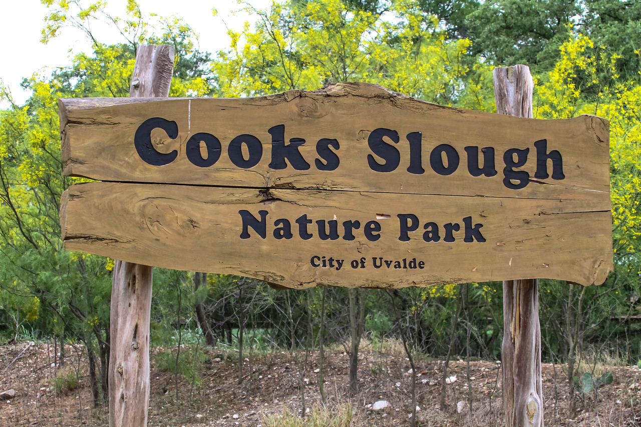 Cooks Slough