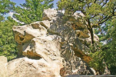 Castle Rock SP - Saratoga, CA