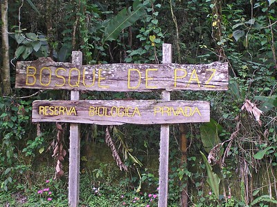 Bosque de Paz Nature Preserve