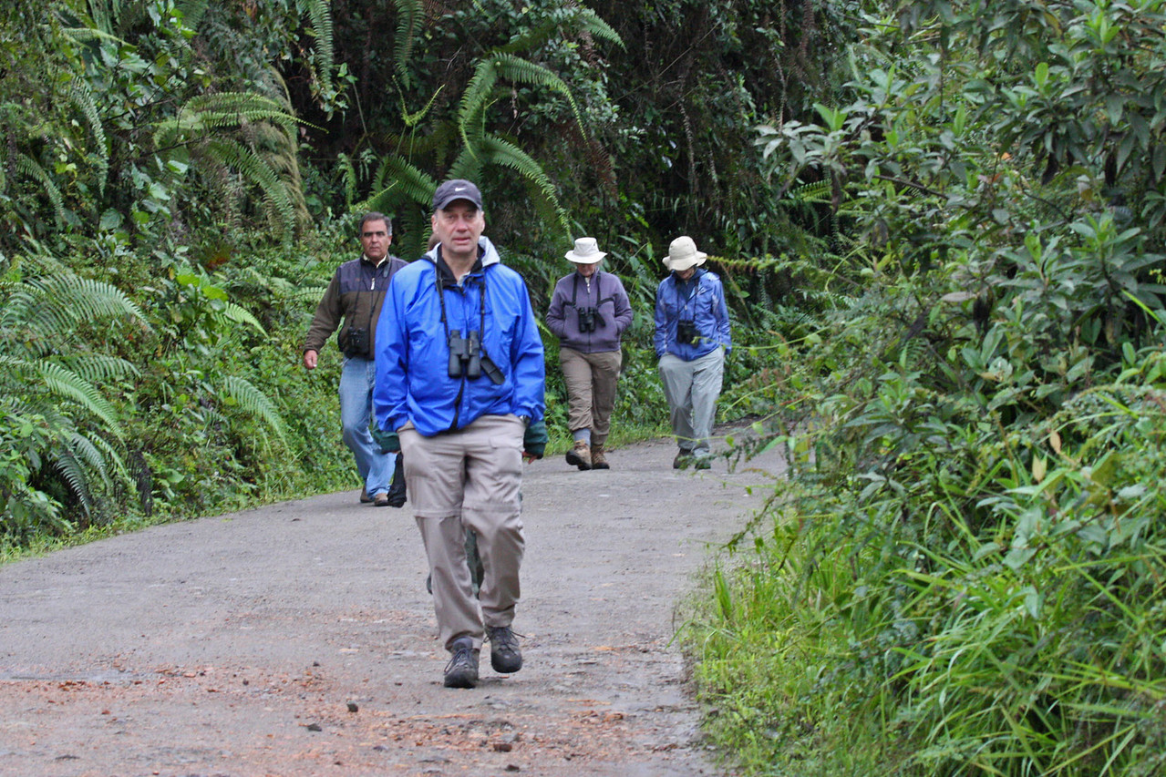 Tour Group - Upper Eco Tourist Road