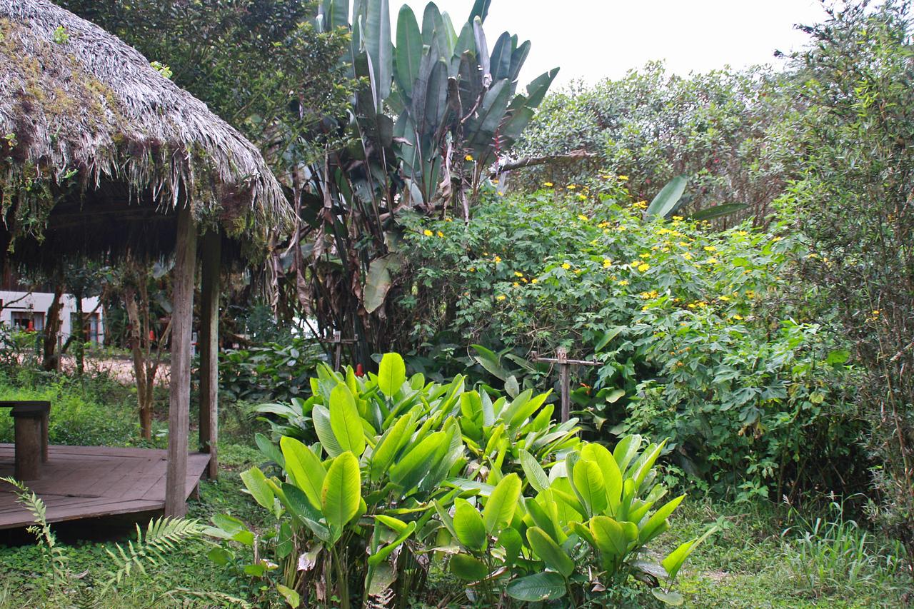 Septimo Paraiso Lodge Grounds